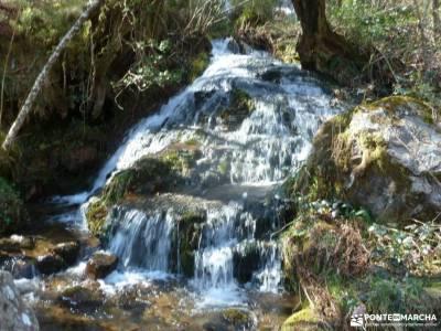 Alto Campoo;Parque Natural Saja-Besaya;rutas senderismo comunidad de madrid parque nacional de covad